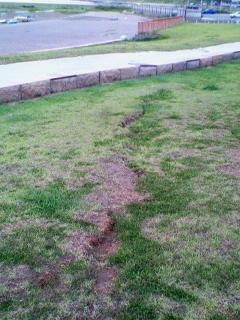 海岸沿いの公園には長く続く地割れ